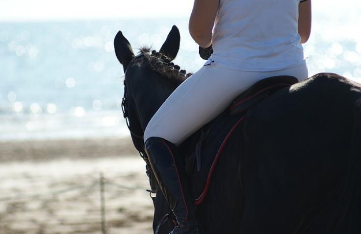 Paardrijden, schade en verzekering